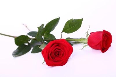 Подарить на день святого валентина букет роз